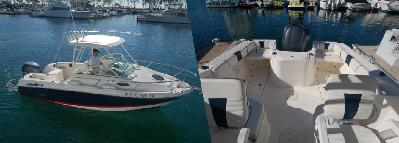 Wellcraft 220 Coastal for sale